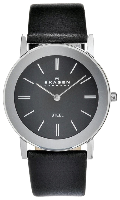 Skagen watch for unisex - picture, image, photo