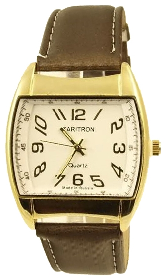 Zaritron watch for men - picture, image, photo